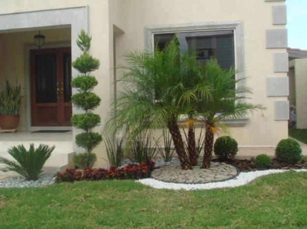 Decora con flores y plantas el antejard n de tu casa for Como decorar el jardin de mi casa